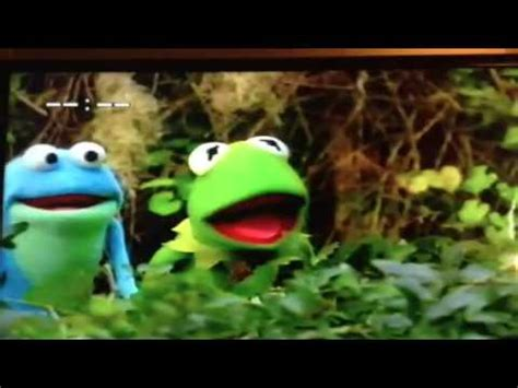 kermits swamp years frogs fighting frogs youtube