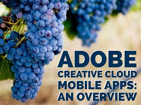 create mobile apps create mobile apps with adobe investdedal