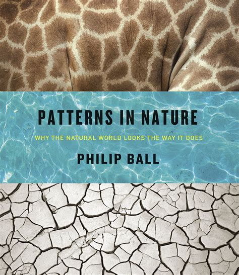 pattern formation in nature pdf the most beautiful book of 2016 is patterns in nature