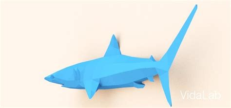 card board shark template diy paper shark paper shark with color paper