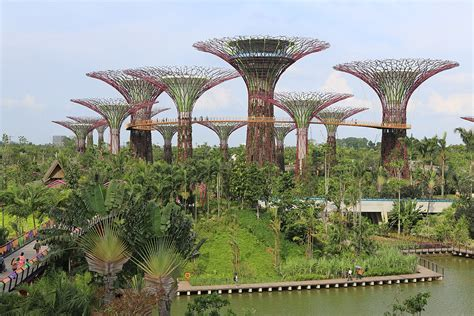 Gardens By The Bay In Mandarin by Gardens By The Bay Wikip 233 Dia
