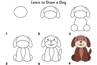 learn  draw farm animals simple diys kids activities