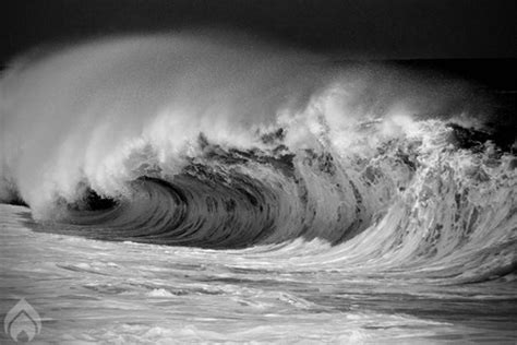 black and white wave wallpaper white walls oceans nature background wallpapers on