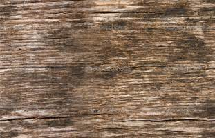Old Barn Lumber 30 Seamless Wood Textures Textures Design Trends