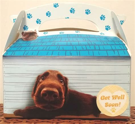 get well soon puppy get well soon gable box gift 187 pered paw gifts