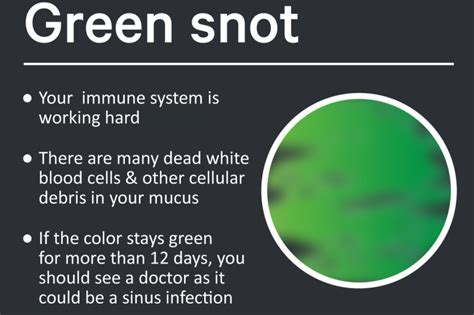 color of boogers green mucus www pixshark images galleries with a bite
