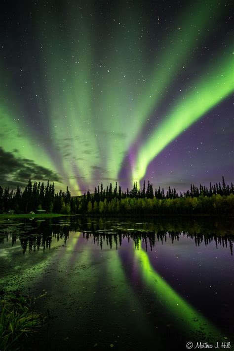 northern lights in summer 17 best images about borealis on canada