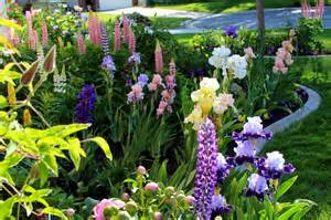 Variety Of Flowers For Garden World Of Irises Quot Talking Irises Quot Bearded Irises In Your Landscape Using A Variety Of