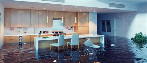 house siting 5 tips for handling emergency situations when house