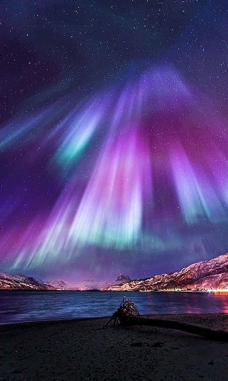 brilliant lights website 1000 ideas about northern lights on