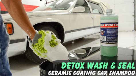 Detox Car by Auto Detailing Detail King