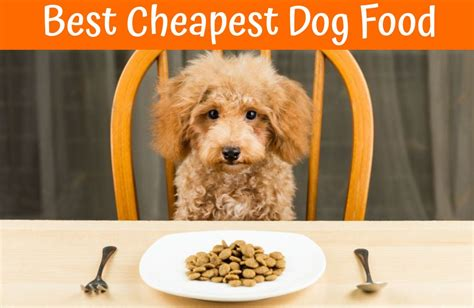 top puppy food the best review and guide of maximum bully food us bones