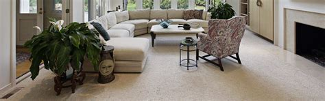 upholstery cleaning alexandria va professional carpet cleaning alexandria va best cleaners