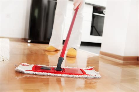 How To Clean Hair From Floor by Better Housekeeper All Things Cleaning Gardening