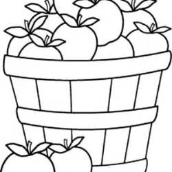 apples and other fruits in the apple basket coloring pages