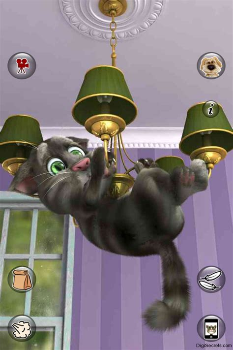 talking tom talking tom 2 is out yes tom is back with an all new