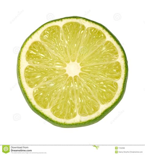 lime slice lime slice stock photo image of nutrition juice produce