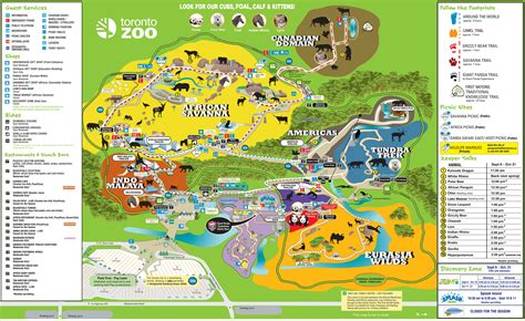 barcelona zoo map toronto zoo map