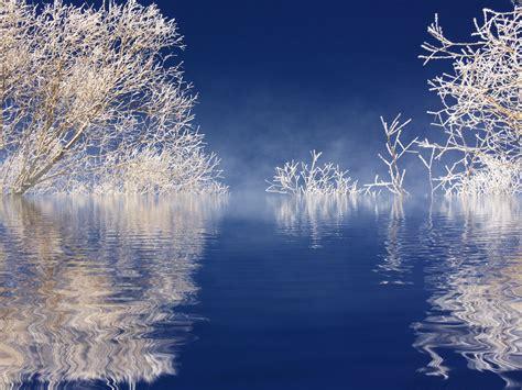 imagenes de paisajes de diciembre fotos gratis paisaje 225 rbol agua naturaleza rama