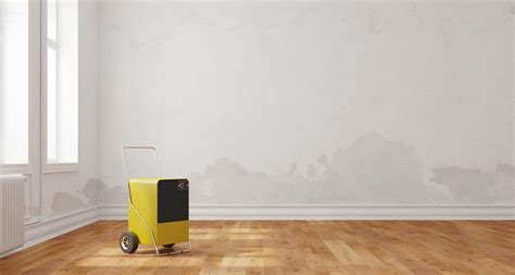 Zu Hohe Luftfeuchtigkeit Im Schlafzimmer by Zu Hohe Luftfeuchtigkeit Erkennen Und Behandeln