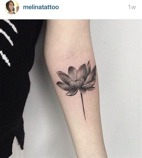 lotus tattoo inspiration 17 best images about tattoo inspiration on pinterest