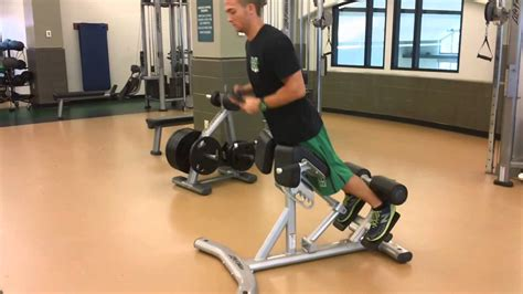 back extension on bench life fitness back extension bench youtube