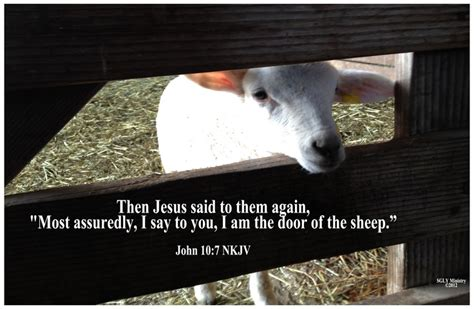 I Am The Door Of The Sheep by 17 Best Images About Jesus On Our I Am