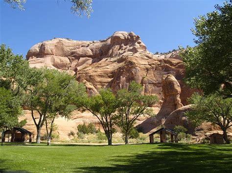 arizona landscape ideas easy landscape ideas for arizona homeowners evergreen turf