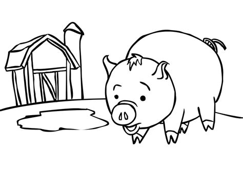 baby pigs coloring page coloring page pig az coloring pages