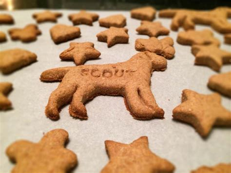 Handmade Treats - treats with peanut butter the cookie rookie