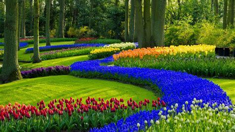 garden spring garden wallpaper