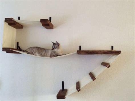 cat wall shelves 1000 images about katten klimsysteem on cat