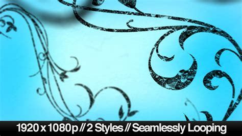 Growing Flourish Of Vines Backdrop 2 Styles Loop By Butlerm Videohive Growing Vines After Effects Template