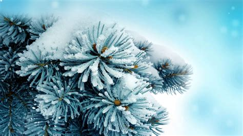 Other Nature free winter wallpaper and other nature desktop backgrounds