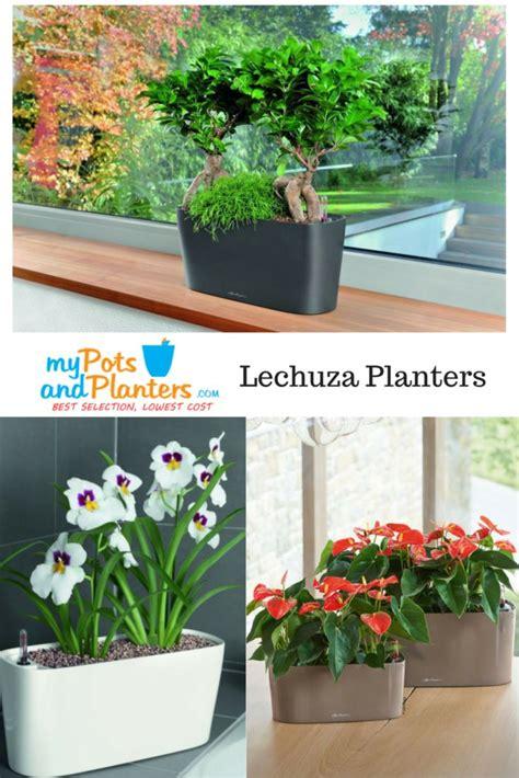 lechuza windowsill self watering planter windowbox com 96 best indoor planters images on pinterest indoor plant