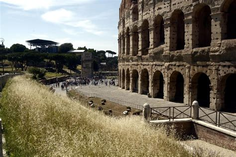 ingressi colosseo colosseo boom di ingressi per domenica gratuita radio