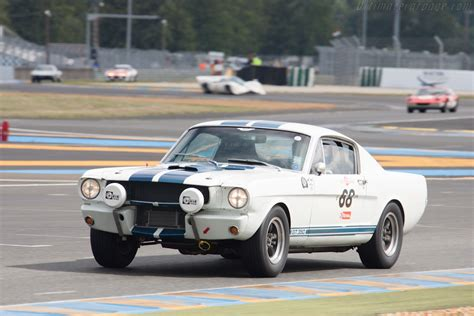 1971 mustang shelby 1971 shelby gt350 www imgkid the image kid has it
