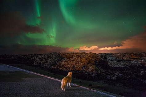 northern light inn iceland auroras nli is northern light inn max s