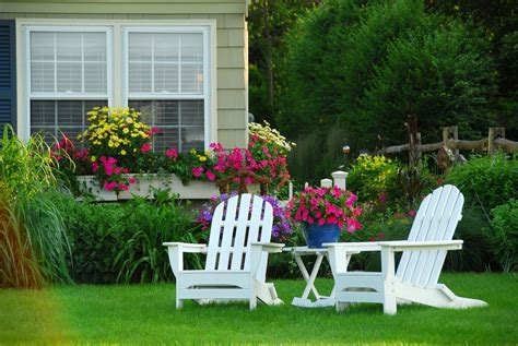 best plants for curb appeal 10 types of flowers for the best curb appeal