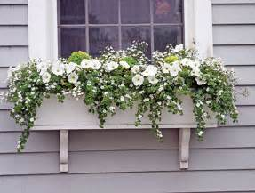 Fall Window Box Ideas - window box ideas 171 hyannis country garden