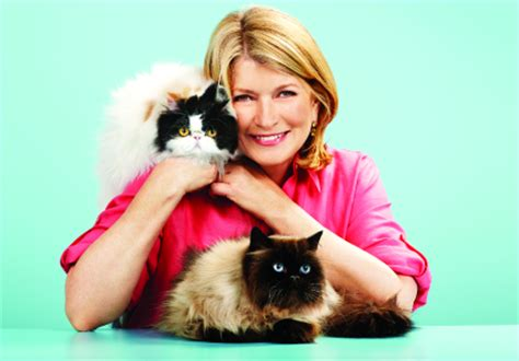 Martha Stewart Sweepstakes - giveaway review martha stewart pets