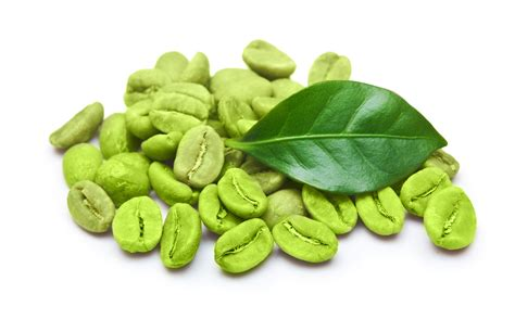 Green Tea Coffee Bean is america s favorite doctor telling the about
