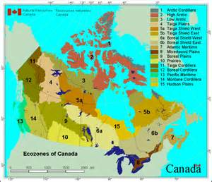 resources map of canada canadian wildland information system