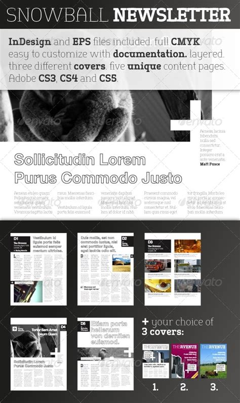 adobe indesign newsletter template newsletter templates indesign cs5