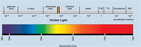 Spectrum Light How To Choose The Right Grow Lights For Your Aquaponics System