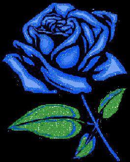 imagenes de rosas azules con brillo y movimiento flores animadas gifs de flores pinterest rosas
