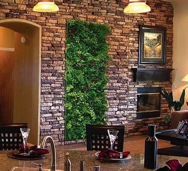 plants wall decorationspng