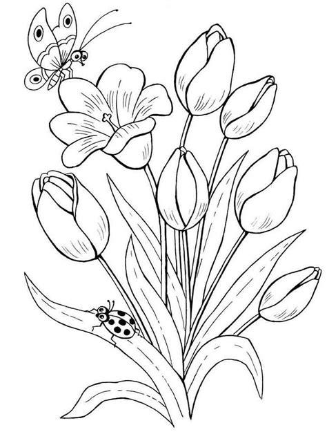 Gambar Mewarnai Bunga Tulip Terbaru | gambarcoloring
