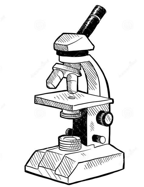 imagenes de un microscopio para dibujar faciles el microscopio 243 ptico y la lupa binocular primeras