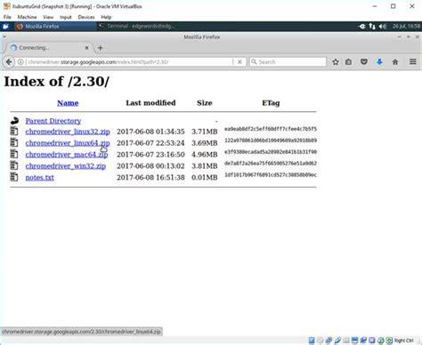 Chrome Driver Download | chrome driver download directory
